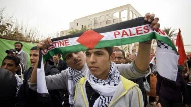 Image result for ципи ливни арабы